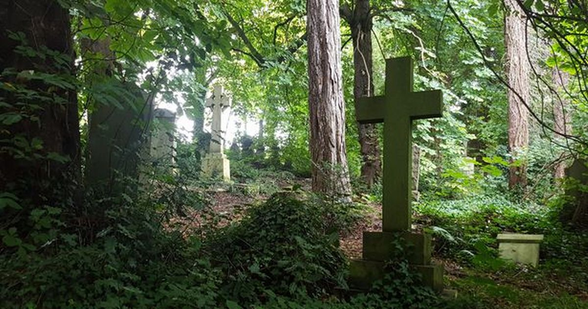 Cathcart Cemetery visitors asked to send photos for new website
