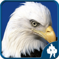Birds Jigsaw Puzzles Game 1.9.17 APK Cracked Downlaod – PRO for android