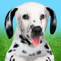 Dog Home 1.1.6 APK Cracked Downlaod – PRO for android