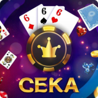 Сека 2.3.2 APK Cracked Downlaod – PRO for android