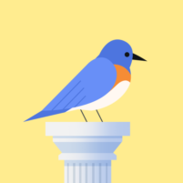 Bouncy Bird: Casual & Relaxing Flappy Style Game 1.0.4 APK Cracked Downlaod – PRO for android