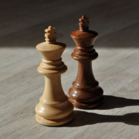 Chess Play With Your Friends 2.81 APK Cracked Downlaod – PRO for android