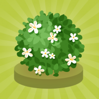 Orchid Growth 1.2.1 APK Cracked Downlaod – PRO for android