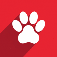 Watch Pet  1.0.11 APK Cracked Downlaod – PRO for android