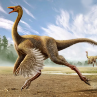 Gallimimus Simulator  1.0.6 APK Cracked Downlaod – PRO for android