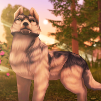 Wolf Tales – Online Wild Animal Sim 200209 APK Cracked Downlaod – PRO for android