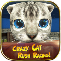 Crazy Cat Rush Racing Run Kitty Craft 1.01 APK Cracked Downlaod – PRO for android