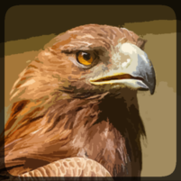 Eagle Hunting Journey 1.79 APK Cracked Downlaod – PRO for android