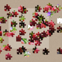 Jigsaw Puzzles 1.9 APK Cracked Downlaod – PRO for android