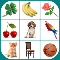 Brain game. Picture Match. 2.4.8 APK Cracked Downlaod – PRO for android