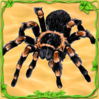 Spider Simulator: Life of Spider 1.0 APK Cracked Downlaod – PRO for android